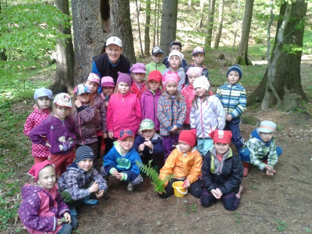 Programy pro mateřské školy